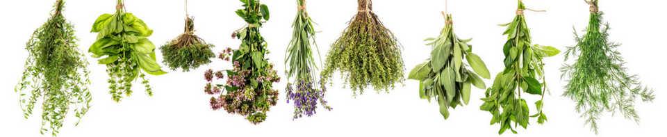 Herbs & Fleur de sel
