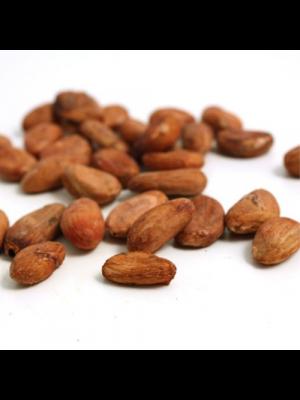 RRRAW Rauwe Cacaomassa 100% 200g, bio