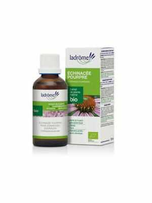 Purple coneflower 100ml, bio
