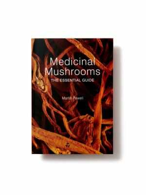 Medicinal Mushrooms / The essential guide - Martin Powell