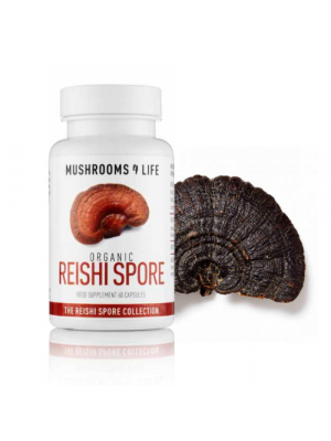 MUSHROOMS4LIFE Reishi Spore supplement 60 caps, bio