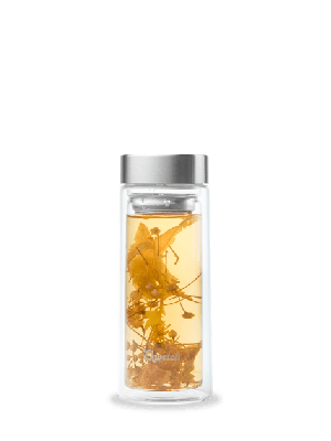 Glass Drinking Bottle – Infuser Bottle from Qwetch