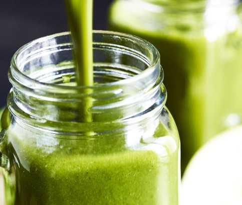 Gula Java Matcha, boisson énergétique verte à la vitamine D du champignon agaric